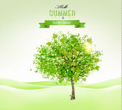 Summer background with a green tree. Stock Image