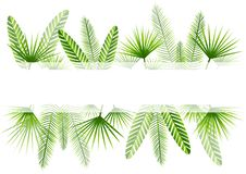 Summer background with green tropical leaves. Border stock illustration