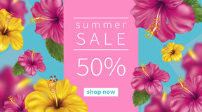 Summer background with Hibiscus. Summer sale background with beautiful blooming tropical flowers of pink and yellow hibiscus is also called Chinese Rose. Vector Royalty Free Stock Photos