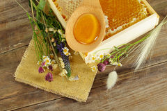 Summer background - honey and flowers Royalty Free Stock Photo