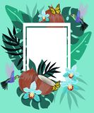 Summer background with hummingbirds, coconut, butterflies and blue orchid. Floral frame with little hummingbirds flying near stock illustration