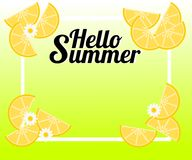 Summer background with lemon and tiny flowers. There is word `Hello Summer`. Illustration use for web banner, poster or flyer. Stock Photography