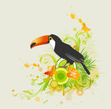 Summer background with ornament and parrot Stock Images