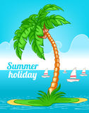 Summer background with palm Royalty Free Stock Photography