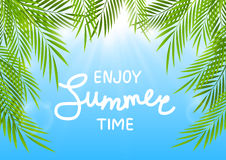 Summer background. With palm leaves Stock Photo