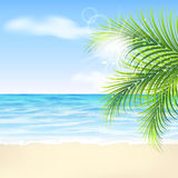 Summer background with palm leaves, beach and sea Royalty Free Stock Image