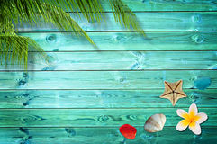 Summer background with palm trees Royalty Free Stock Image