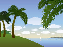 Summer background with palms Stock Images