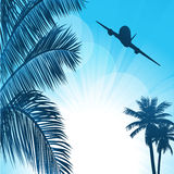 Summer background with palms and airplane Royalty Free Stock Images