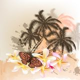 Summer background with palms Royalty Free Stock Photo
