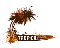 Summer background with palms. Vector Royalty Free Stock Photography