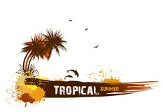 Summer background with palms. Vector Royalty Free Stock Images