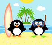 Summer background with penguin Stock Images
