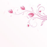 Summer background in pink Stock Image