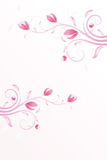 Summer background in pink Royalty Free Stock Photo