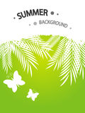 Summer background. With place for text Stock Image