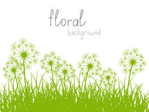Summer background Royalty Free Stock Photos