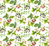 Summer background - repeating herbal pattern with meadow berries Royalty Free Stock Image