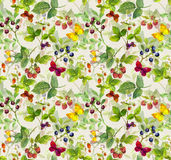 Summer background - repeating pattern with wild herbs, butterflies, berries Royalty Free Stock Image