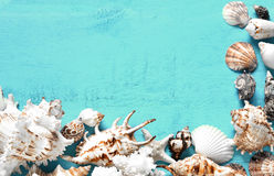 Summer background, sea shells on turquoise blue wood, top view, copy space. Stock Photo