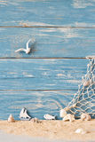 Summer background with sea shells on a wooden plank Royalty Free Stock Image