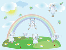 Summer background with sheep Stock Image