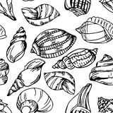 Summer background with shell elements. Repeating print background texture. Royalty Free Stock Images