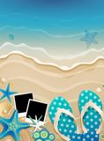Summer background with shells Royalty Free Stock Image