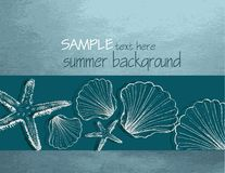 Summer background with shells Stock Photography