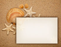 Summer background - shells on sand Royalty Free Stock Photography