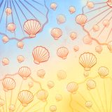 Summer background with shells Royalty Free Stock Photography