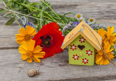 Summer background with a snail and decorative starling house Royalty Free Stock Photos