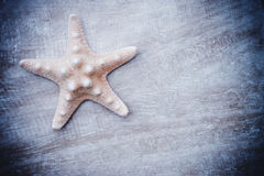 Summer background starfish Stock Photography