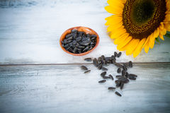 Summer   background with  sunflowers seeds Royalty Free Stock Images