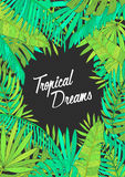 Summer background with tropical leaves, monstera, chamaedorea, banana and other palms. Template for placard, poster Stock Photo