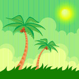 Summer background. Two palm trees Stock Photography