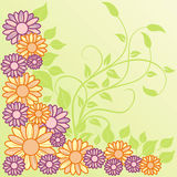 Summer background, vector stock photography