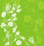 Summer background. Vector illustration  Stock Image