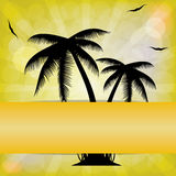 Summer Background .vector Stock Images