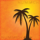 Summer background whit palm trees. Royalty Free Stock Photos