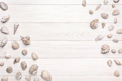 Summer background with white wooden table with many seashell. Copy space stock photography