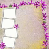 Summer Background With Frame And Flowers Royalty Free Stock Photography