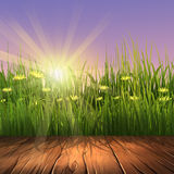 Summer background with wooden frame. Digital illustration of a green grass and wooden frame Stock Images