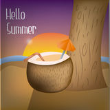 Summer backgrounds Royalty Free Stock Images