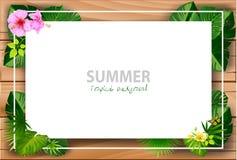 Tropical island circlet of beautiful plants vector illustration
