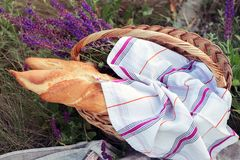 Picnic in the meadow. Summer -  baguette and wine at the  basket Stock Photos