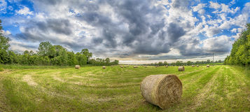 Summer bails. Hay bail in a field in the summer panoramic landscape warm Royalty Free Stock Images