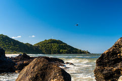 Summer in Balneario Camboriu. A summer scene in one beach of Balneario Camboriu, Southern Brazil. Rocks on the sea water and on the background green mountains Royalty Free Stock Photos
