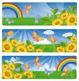 Summer banner,  Stock Photos