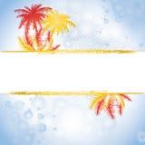 Summer banner. Splatter summer banner with palms,  illustration Royalty Free Stock Photography